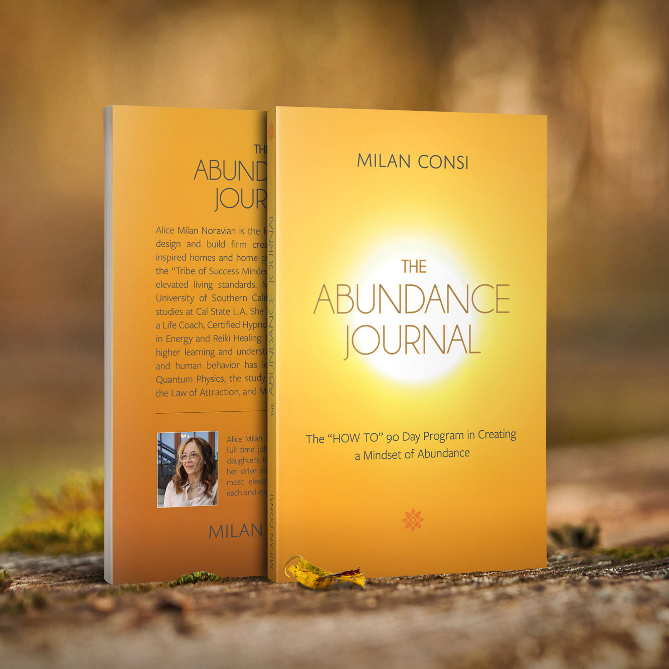 The Abundance Journal